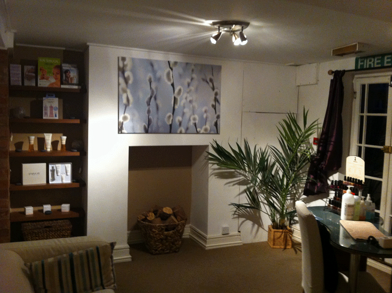 View of Salon Fireplace